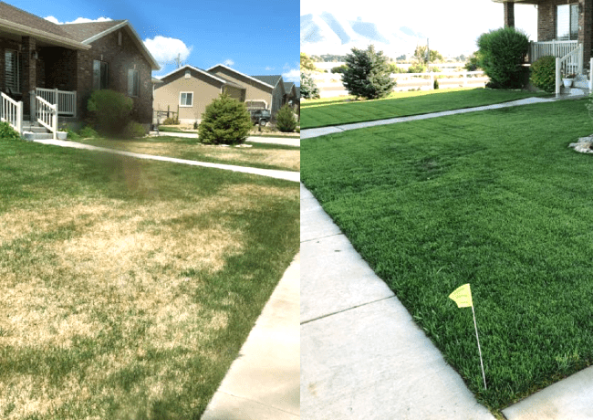 Heber - Midway eco friendly lawn care products